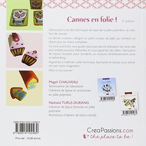 Livre Fimo - Cannes en folie de Magali Chauveau